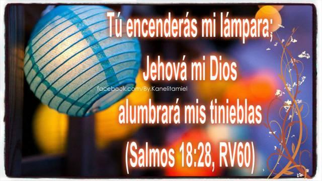 Salmos 18:28