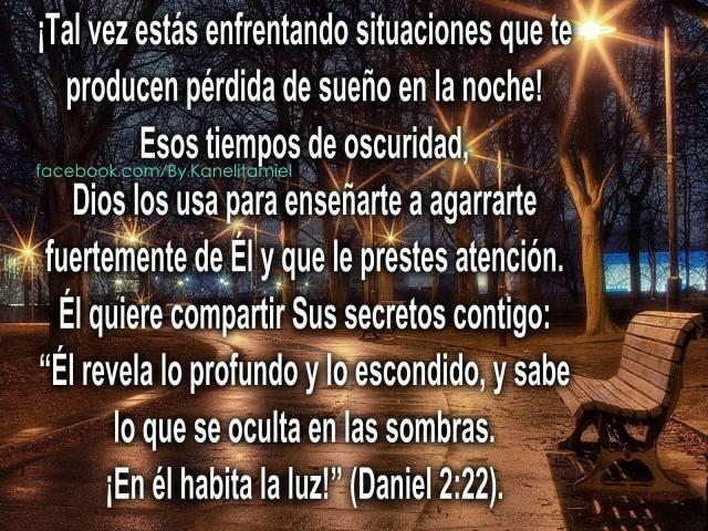 Daniel 2:22