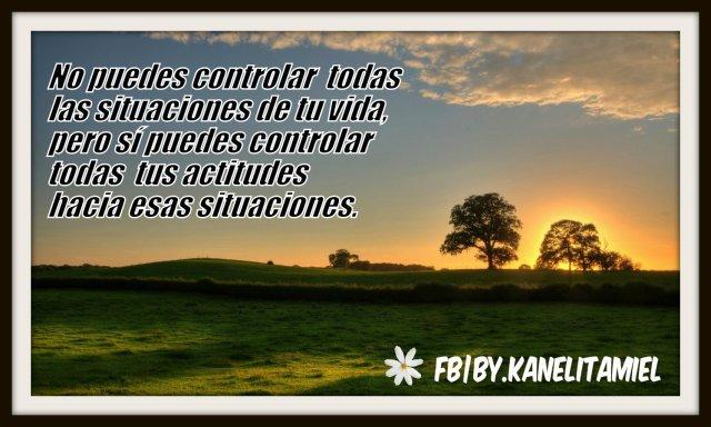 No puedes controlar todas las situaciones de tu vida, pero sí puedes controlar todas tus actitudes hacia esas situaciones.