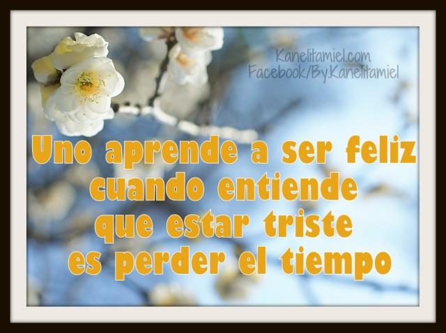 Uno aprende a ser feliz cuando entiende que estar triste es perder el tiempo...