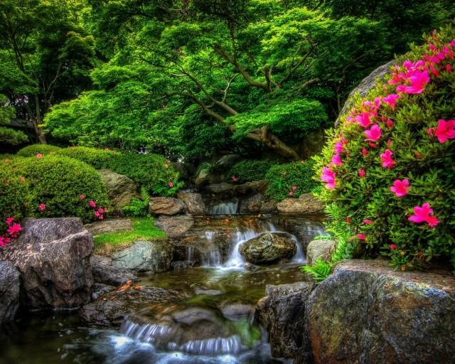 priroda-park-les-reka-kamni