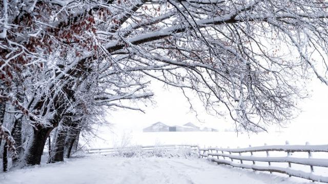 zima-sneg-zabor.jpg